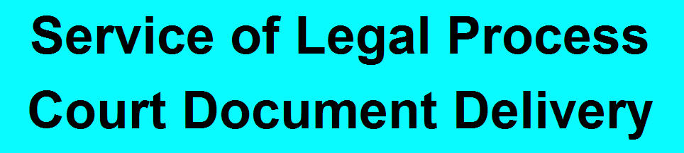 Legal Document Delivery Process Server