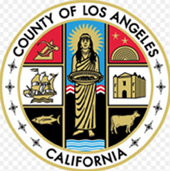 Registered Process Server in Los Angeles